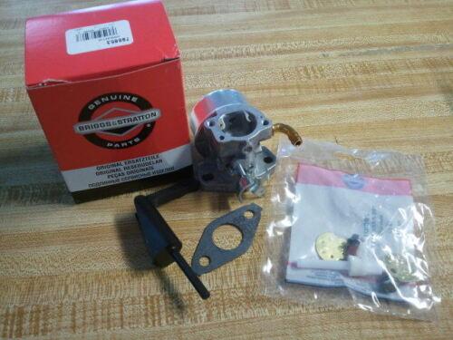 Briggs /& Stratton Carburetor 798653 697354 790290 698860 696981 791077 OEM Carb