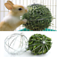 8cm-Sphere-Feed-Dispenser-Hanging-Ball-Guinea-Pig-Hamster-Rabbit-Pet-Toy-Mini thumbnail 2