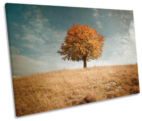 Lone automne arbre paysage single toile murale art photo print
