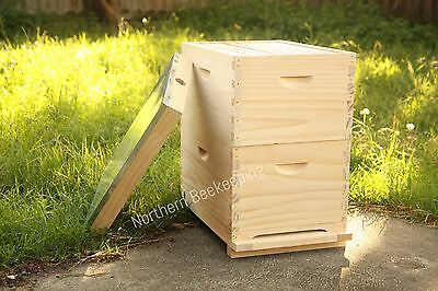 ASSEMBLED 8 FRAME BEE HIVE NZ PINE BEEHIVE WITH WAX FOUNDATION READY TO GO