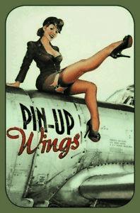 Wings-pin-up-girl-escudo-de-chapa-metal-escudo-Escudo-jadeara-Tin-sign-20-x-30-cm