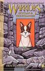 Skyclan and the Stranger #01: The Rescue by Dan Jolley, Erin L Hunter (Hardback, 2011)