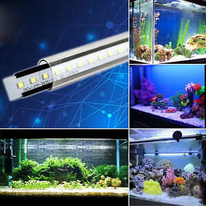 Waterproof led aquarium lamp marine submersible plant glow fish image is loading waterproof led aquarium lamp marine submersible plant glow mozeypictures Image collections