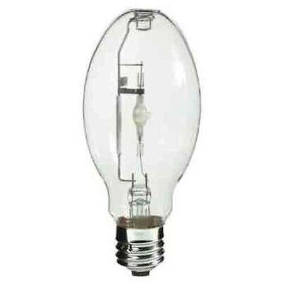 75 Watt Halogen Light Bulb Lamp JCD75//CL//G9  Plusrite 3419