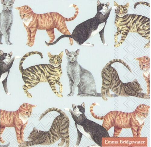 Serviette x2 BUY 4 get 2 FREE Cats Paper Napkin for Decoupage Tissue