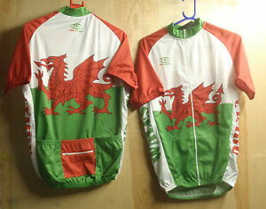 Image is loading PRO-VISION-WELSH-S-S-CYCLING-JERSEY-M-3XL- a8afdb3e7