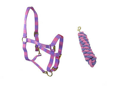 HORSE ( SMALL PONY) PINK AND PURPLE HEAD COLLAR & MATCHING LEAD ROPE SET