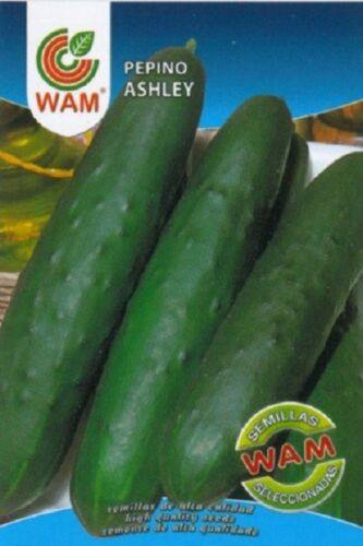 Envase 6 gr. Semillas de Pepino Ashley WAM