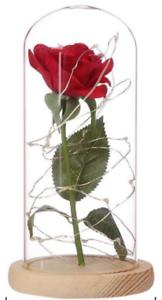 Bien Rose Éternelle Rouge La Belle Et La Bête Dôme Led Cadeaux Anniversaires Mariages Retarder La SéNilité