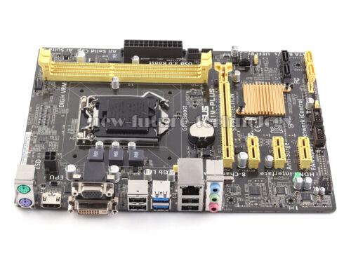 ASUS H81M-PLUS LGA 1150 DDR3 USB3.0 VGA Intel H81 Micro ATX HDMI Motherboard