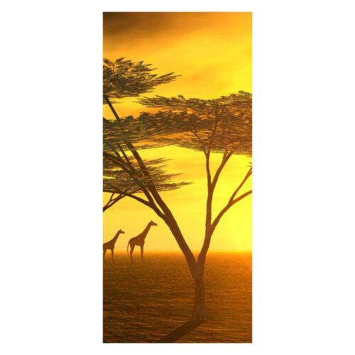 la fresque m0042 türbild Türtapete Afrique Papier Peint porte-Autocollants