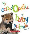 My Encyclopedia of Baby Animals by Emmanuelle Figueras (Hardback, 2016)