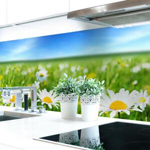 Kuechenrueckwand-Blumenwiese-Premium-Hart-PVC-0-4-mm-selbstklebend