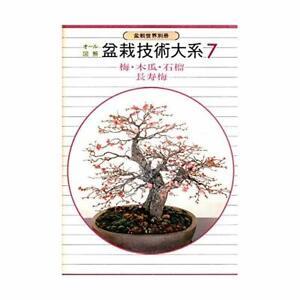 Bonsai-technology-Birdman-7-plum-quince-pomegranate-longevity-PLUM