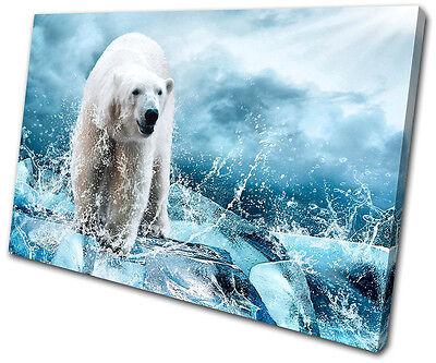 Animals Polar Bear SINGLE CANVAS WALL ART Picture Print VA