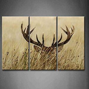 Image Is Loading Framed Deer Stag Long Antler Natural Canvas Art