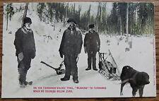 ON THE FAIRBANKS VALDEZ TRAIL - MUSHING at 60 BELOW ZERO -  ALASKA  OLD POSTCARD