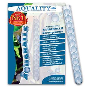 0-58-Euro-Stueck-AQUALITY-AQUABALLS-frische-Mikroorganismen-12-Balls