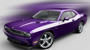 Image Is Loading Plum Crazy Purple Paint Gallon Ready To Spray