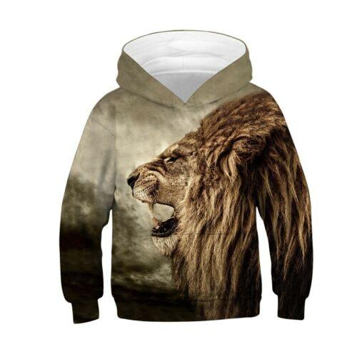 Boys Girls 3D Print Hoodies Coat Jacket Sweatshirt Pullover Hip Hop Jumper 4-13Y