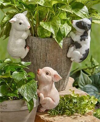 Farm Animal Pot Hangers Pig