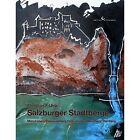 Salzburger Stadtberge von Christian F. Uhlir (2011, Kunststoffeinband)