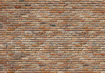 BACKSTEIN STONE Photo Wallpaper Wall Mural BRICK WALL Made in Germany! 368x254cm