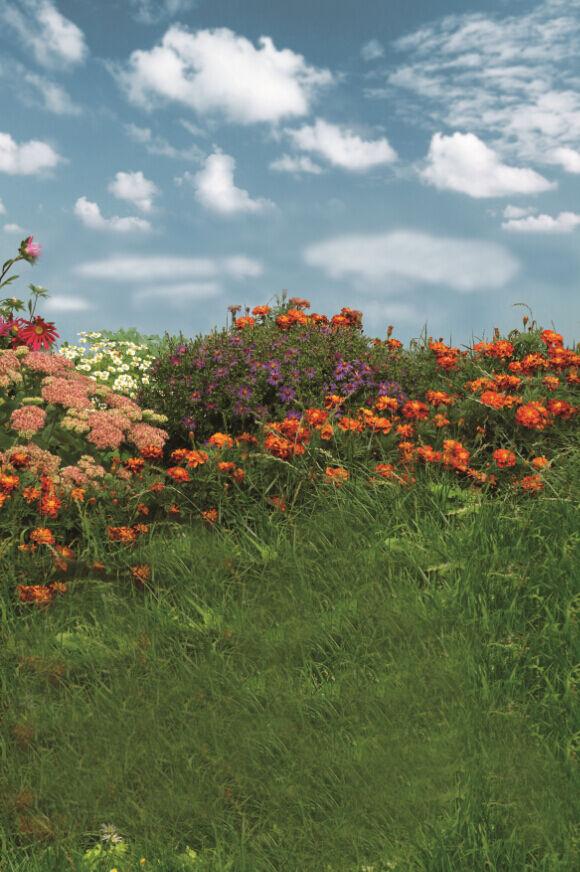 3D Fleur Herbe 223 Photo Papier Peint en Autocollant Murale Plafond Chambre Art