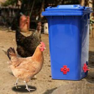 Chicken Drinking Cups red Quail Chicken Water Bowl Automatic poultry feeder | eBay
