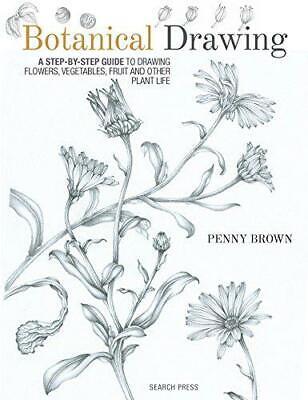 Dibujo Botánico Una Guía Paso A Paso Para Dibujo Flores