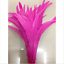 Wholesale-10-2000-Pcs-Beautiful-Rooster-Tail-Feathers-12-14-Inches-30-35cm thumbnail 12