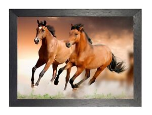 Cheval 15 Animal Nuture Beau Image Love Affiche Gallop Courir Photo Imprimé