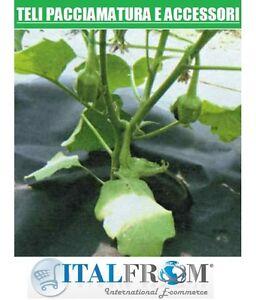Telo per pacciamatura in tnt tessuto non tessuto traspirante x erbaccie 1 6x5mt ebay - Telo tessuto non tessuto giardino ...