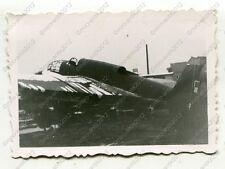 Foto, Wehrmacht, zerstörtes polnisches Flugzeug, PZL.37 Łoś, Polen (W)1236