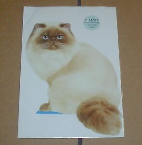 Lovely-Free-Standing-Seal-Point-Colourpoint-Or-Himalayan-Cat-Blank-Card