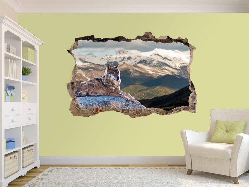 Loup Couché sur sur sur Rochers Photo Trou dans Autocollant Mural Décoration (17346861) | être Nouvelle Dans La Conception  be3ad2