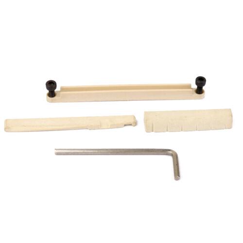 Büffelknochen Stegsattel Und Schlitzmutter Für 6 String Akustische Gitarre