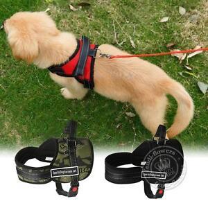 Adjustable-Soft-Padded-Non-Pull-Pet-Dog-Harness-Chest-Vest-Walking-S-L-Nylon