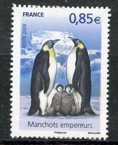 STAMP-TIMBRE-FRANCE-N-4351-MANCHOTS-EMPEREURS-AVEC-POUSSINS