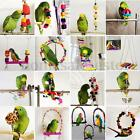 Colorful Swing Bird Parrot Rope Harness Hammock Hanging Toys Parakeet Cockatiel