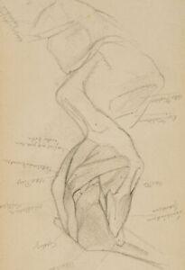 Anatomische-Studien-eines-Muskelaufbaus-19-Jh-Bleistift