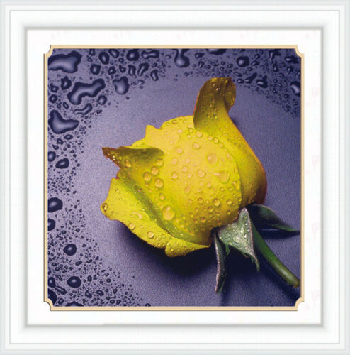 DIY 5D Diamond Painting Full drill Rose Flower Water drop Embroidery Craft 301D