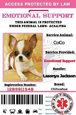 Pink Emotionalsupport Dog Card Id Assistance Animal Badge Ada Esa With Barcode Ebay