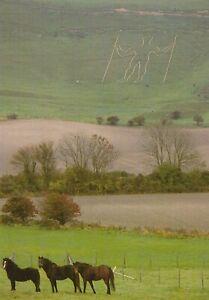 Sussex Postcard - The Long Man of Wilmington   RRR501