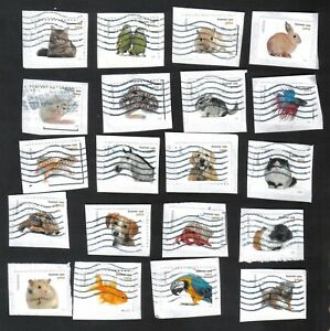 #5106-5125, Animaux Utilisés Ensemble De 20, Pour Toujours, Sur Papier-afficher Le Titre D'origine Qualité SupéRieure (En)