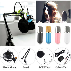 Mic-Microphone-Stand-Suspension-Boom-Arm-Studio-Desktop-Holder-Mount-Filter