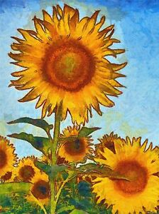 ABSTRACT-PAINTING-SUN-FLOWER-PLANT-NATURE-COOL-POSTER-ART-PRINT-PICTURE-BB235A