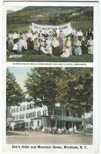 Postcard-Coe-039-s-Hotel-and-Mountain-Home-Windham-NY