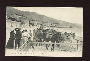 Animals-DONKEYS-France-Menton-Promenadec1900-10s-LL-Louis-Levy-PPC