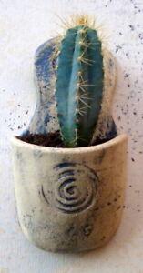 Diligent Fait à La Main Naturel & Matt Blue Ceramic Pottery Wall Vase Jardiniere Intérieur/extérieur-afficher Le Titre D'origine Blanc Pur Et Translucide